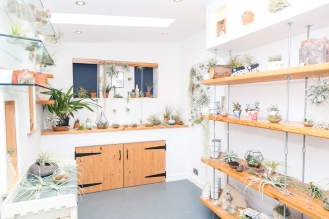 Tremenheere Nursery - Inside Curious Cabin